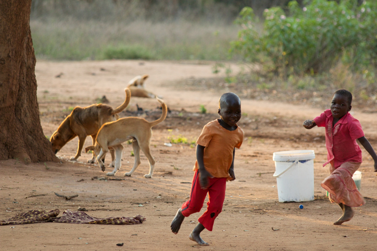 Dogs_ChildrenPlaying2.jpg